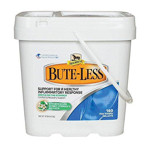 Bute-Less® Comfort & Recovery by Absorbine