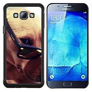 Greyhound gafas inteligentes del perro de Brown- Metal de aluminio y de plástico duro Caja del teléfono - Negro - Samsung Galaxy A8 / SM-A800