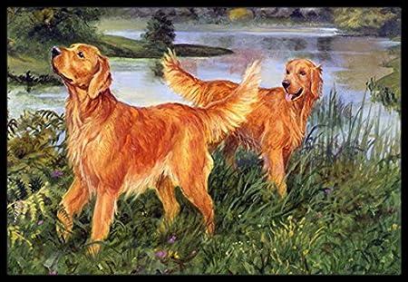 Multicolor 18 x 27 Carolines Treasures HEH0081MAT Irish Setters by Elizabeth Halstead Indoor or Outdoor Mat