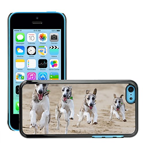 Premio Sottile Slim Cassa Custodia Case Cover Shell // V00001711 chiens courants // Apple iPhone 5C