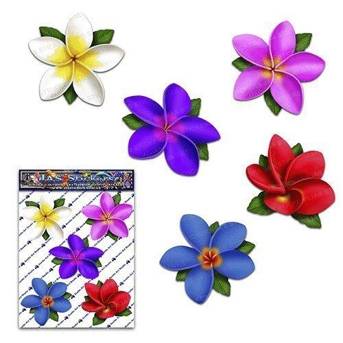 Flower multi coloured single frangipani plumeria small pack car stickers decals st00041mc sml jas