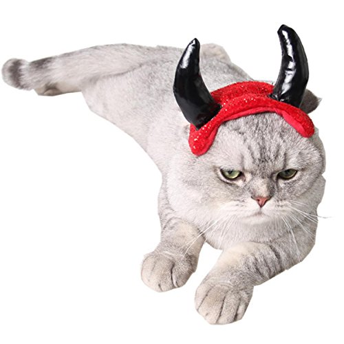 Thrown Together Costumes (PetBoBo Pet Dog Cat Head Funny Joke Trick Toy for Halloween party, Practical Jokes Gag Toys, Fancy Headband, Devil Hat)