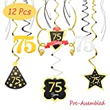 75 Birthday Decoration Happy 75th Birthday Party Silver Black Gold Foil Hanging Swirl Streamers I'm Seventy Five Years Old Today Birthday Hat Gold Star Ornament Party Present Supplies