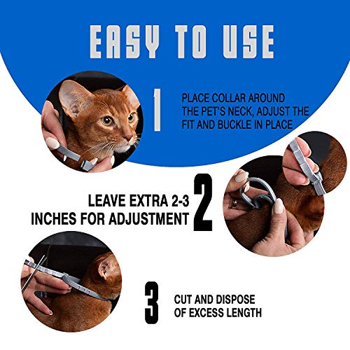 Buy what is the best flea and tick prevention for cats