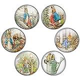 Button Bistro Women's Tales of Peter Rabbit 1.25 inch Pinback Button Set Pins