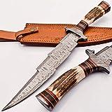 knifehills Rare Custom Blood GROOVED Custom Damascus Fighter Kris Dagger Bowie Knife | STAG Antler Handle (KM-7003)