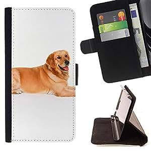 - Labrador Golden Retriever Dog - Estilo PU billetera de cuero del soporte del tir???¡¯????n [solapa de cierre] Cubierta- For Samsung Galaxy S6 £¨ Devil Case £©