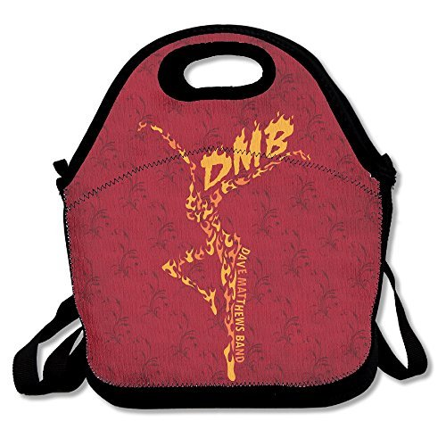 reusable-stand-up-album-dave-matthews-band-crossbody-lunch-bag-accessories