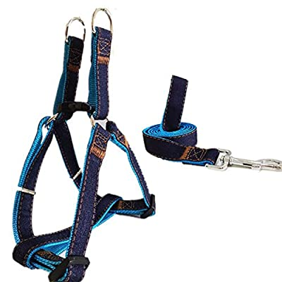 "Fairwin No Pull Dog Leash Harness, Step In Dog Harnesses & Leashes for Large Medium Small Dogs, Easy Walk Dog Harness ( Blue, 5/8"" X 4 FT)"