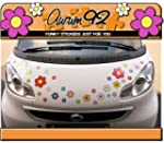 Funky Flower Colourful Car Stickers -...