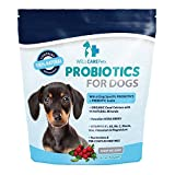 Cheap Well Care Pets Dog Probiotics Powder Supplement