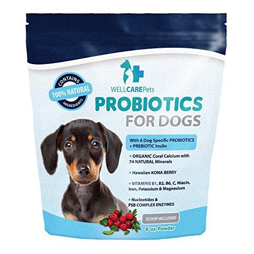 Cheap Well Care Pets Dog Probiotics Powder Supplement