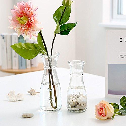 Frascos de vidrio transparente y contenedores de agua para fomentar la pequeña piña verde floreros de flores secas de giro floral en el salón decorado con ...