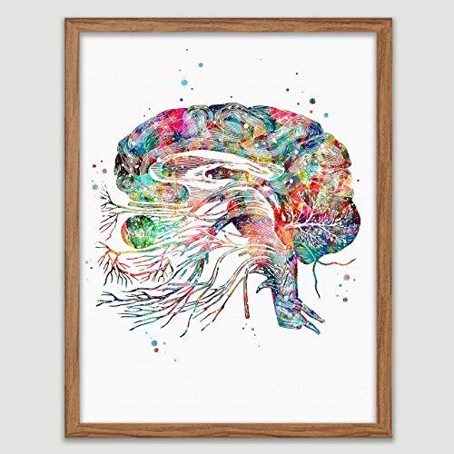 Brain Cranial Nerves Watercolor Poster Neurons Art Neurology Print Neuro Brain Diagram Decor Anatomy Neurologist Office Wall Art Wall Decor Neuroscience Art Neurons Synapses Doctor Office Print