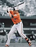 Manny Machado Signed Baltimore Orioles 16x20 Spotlight Photo (PSA/DNA)