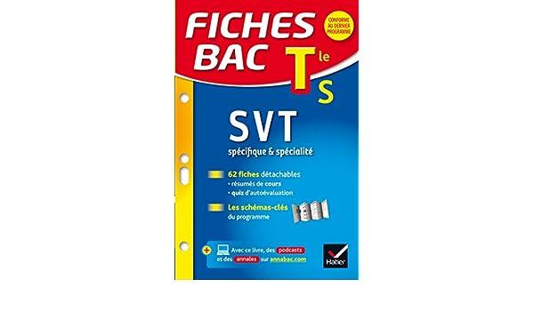 Fiches bac SVT Tle S spécifique & spécialité : fiches de révision - Terminale S: Amazon.es: Arnaud Mamique, Bruno Semelin, Isabelle Bednarek-Maitrepierre: ...