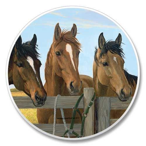 Horse Trio - Auto Coaster ()