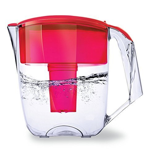 Ecosoft Water Filter Pitcher Jug - BPA-Free - Patent Commercial Grade Water Cleaner Ecomix - 8 Cups Purified Water, 10 Cup Capacity with 1 Free Cartridge for Home and Camping Filtration, Red by Ecosoft