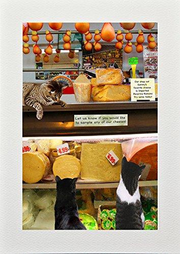 Cat Greeting Cards, New York City, The Bronx Cheese Shop, Blank 5 X 7 Inches, Handmade by Deborah Julian