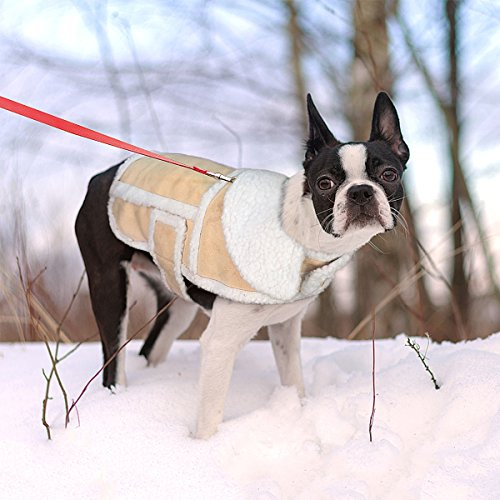 Namsan Dog Warm Coat,Dog Jacket,Winter Dog Clothes,Cold Weather Dog Jacket for Small Dogs