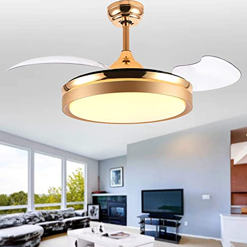 Bella Depot 42 Ceiling Fans with Lights Gold Contemporary Ceiling Fans Retractable Blades Remote Control Included, CCT Dimmable LED Light