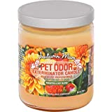 Autumn Mum Pet Odor Exterminator 13 Ounce Jar Candle