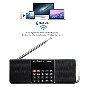 Wireless Radio Speaker,ELEGIANT Portable Multifunction Dual Channel Digital AM/FM Radio Media Wireless Speaker MP3 Music Player Support TF Card/USB Disk with LED Screen Display, Clock Function