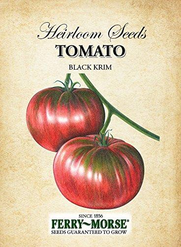 Ferrys Seed - Ferry-Morse Heirloom Tomato Black Krim Seeds