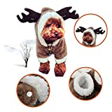 LUCKSTAR Dog Clothes - Pet Clothes Elk Costume Christmas Elk Moose Cool Cute Pet Cosplay Soft Warm Coral Fleece Pet Hoodie Coat Winter Clothing Jumpsuit for Christmas Party Gifts Pet Supplies (L)