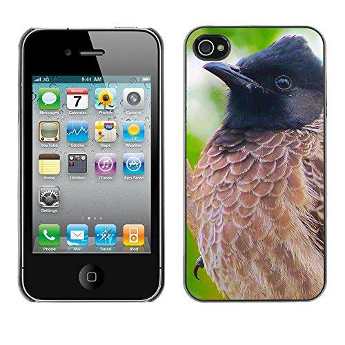 Premio Sottile Slim Cassa Custodia Case Cover Shell // F00008942 oiseau // Apple iPhone 4 4S 4G