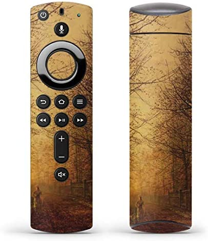 igsticker Fire TV Stick 第2世代 専用 リモコン用 全面 スキンシール フル 背面 側面 正面 ステッカー ケース 保護シール 003224 クール 写真・風景 景色 風景 絵画 イラスト