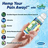 Hemp Seed Oil Pain Relief Roll On - Topical