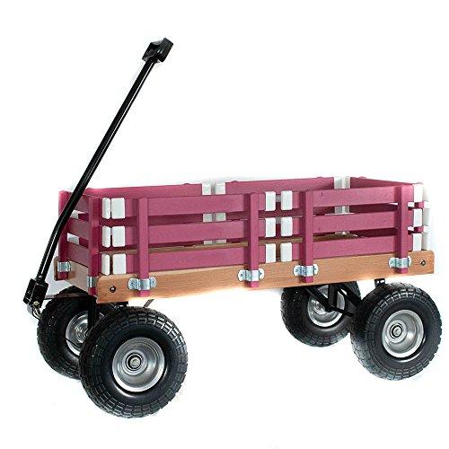 Berlin F4110-Hot Pink Sports Wagon]()