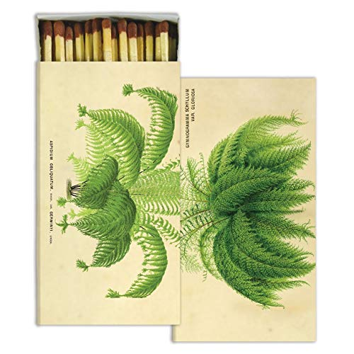 My Swanky Home Antique Style Botanical Fern Plant Matches | Set 10 Graphic Paper Long Fireplace ()