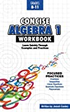 Concise Algebra 1: Learn Algebra 1 Basics in This Workbook Style Textbook | Including Detailed Lessons and Over 50 Practice Problems with Solutions
