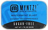Myntz Wintermynt Blast Breathmints,Sugar Free 1.75-Ounce Containers (Pack of 12)