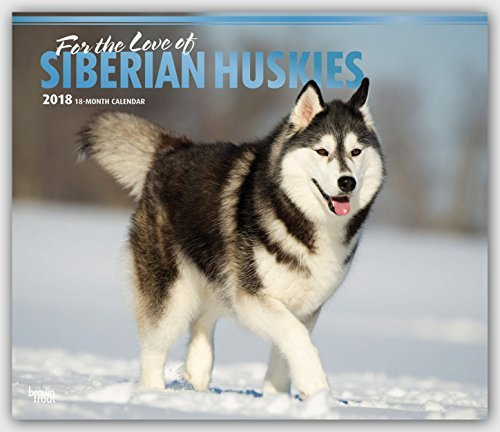 For the Leaning of Siberian Huskies 2018 14 x 12 Inch Monthly Deluxe Wall Calendar with Foil Stamped Cover, Organism Dog Breeds Husky
