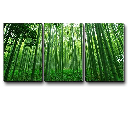 Wall26 - Three Piece Canvas - Diagonal Green Bamboo Forest on 3 Panels - Canvas Art Home Decor - 24x36 - Bamboo Forest