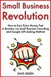 img - for Small Business Revolution: How to Earn Extra Money Fast in Business via Small Business Consulting and Google Gift Jacking Method book / textbook / text book