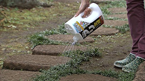カダン アリ用殺虫剤 アリ全滅シャワー 2L