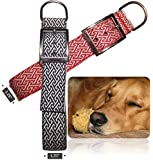 """Genie Best Basic Dog Collar (2 for 1) 1.25"""" Width for MEDIUM Dogs with Strong/Long Necks (Neck Sizes 10""""-16). Cushion Nylon Collars With Padding & Metal Buckle D-Ring"""