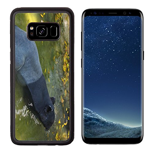 Liili Premium Samsung Galaxy S8 Aluminum Backplate Bumper Snap Case tapir wild adult male in river corcovado national park costa rica IMAGE ID - Mal Park Meadows
