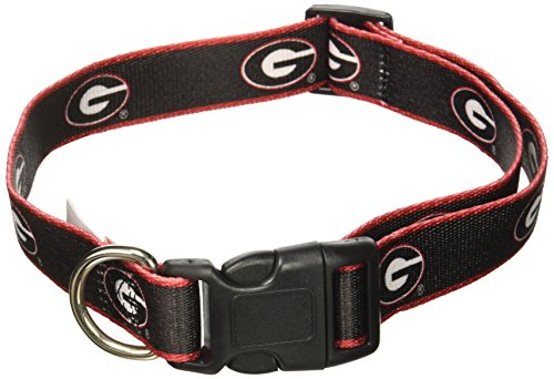 NCAA Georgia Bulldogs Dog Collar, Medium/Large  - New Design