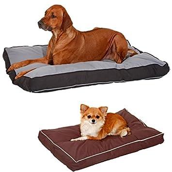 Karlie Doc Cama Perro Cama lavable en beige/marrón: Amazon.es: Productos para mascotas