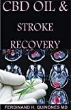 CBD OIL AND STROKE RECOVERY: The Ultimate Guide