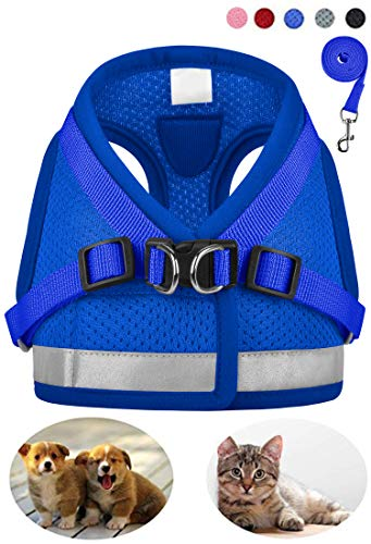 GAUTERF Dog and Cat Universal Harness with Leash Set, Escape Proof Cat Harnesses - Adjustable Reflective Soft Mesh Corduroy Dog Harnesses - Best Pet Supplies (XX-Small, Blue)
