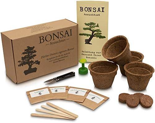 ANISTA - Bonsai Anzuchtset - Züchte Deine eigenen Bonsaibäume. 4 Sorten Bonsai Samen in unserem kompletten Pflanzset. Schöne Geschenkidee zu Allen Anlässen.
