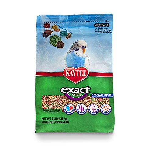 Cheapest Kaytee Exact Fusion Bird Food for Parakeets, 3-lb bag Check this out.