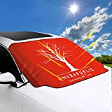 Premium Universal Car Windshield Snow Cover OneRepublic for Most Vehicles,Protect The Windshield and Keeps Ice & Snow Off,58 X 46 Inch