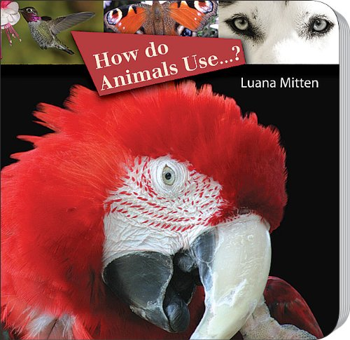 Download How Do Animals Use . . .? (Rourke Board Books) ebook